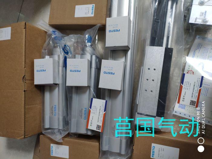 FESTO气缸DSBC-80-60-PPSA-N3,资料